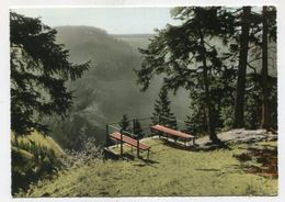 GERMANY - AK 313094 St. Andreasberg / Oberharz - An Der Roßtrappe - St. Andreasberg