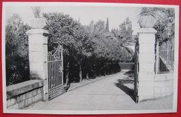 MONTENEGRO - CRNA GORA, HERCEGNOVI - ULAZ U VRT, ORIGINAL FOTO CA. 1940 - Montenegro