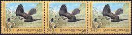 Hungary 2012 Block 3 V Used Falcon Bird Birds - Águilas & Aves De Presa
