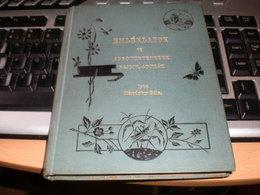 Emleklapok Aprotortenetek Rajzok Adomak  Mandoky Bela Debrecen 1891 148 Pages - Books, Magazines, Comics