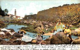 Tenerife - Lavanderas (top Animation 1911 Animado) - Tenerife
