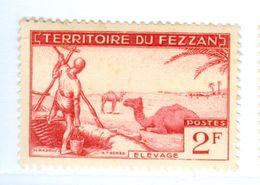 ITALIA, ITALY, FEZZAN, OCCUPAZIONE FRANCESE, 1951, FRANCOBOLLO NUOVO (MLH*) 2 F.   Sass. 31 - Fezzan & Ghadames