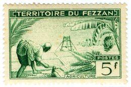 ITALIA, ITALY, FEZZAN, OCCUPAZIONE FRANCESE, 1951, FRANCOBOLLO NUOVO (MLH*) 5 F.   Sass. 33 - Fezzan & Ghadames