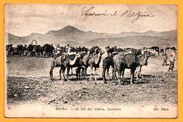 Batna - Le Pic Des Cèdres - Caravane - Dromadaire - Animée - ND PHOT - Batna