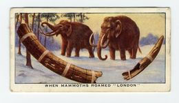"Churchman - 1937 - Treasure Trove - 1 - When Mammoths Roamed ""London"", Mammouth, Mammoet - Churchman"