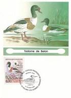 VILLARS  LES  DOMBES  --  OISEAU   TADORNE  DE  BELON  --  CARTE  MAXIMUM - Villars-les-Dombes
