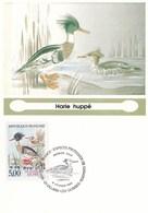 VILLARS  LES  DOMBES  --  OISEAU   HARLE  HUPPE  --  CARTE  MAXIMUM - Villars-les-Dombes