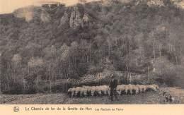 Le Chemin De Fer De La Grotte De Han - Les Rochers De Faule - Rochefort