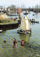 Douarnenez Grand Port De Peche Vieux Gréements Au Mouillage Au Port Rhu Devant La Criée 1990 CPM Ou CPSM - Douarnenez