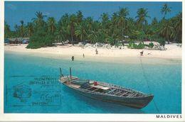 MALDIVES (833) - Maldive