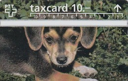 11498-TAXCARD-USATA - Suisse