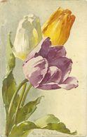 Klein Catharina Illustrateur Fleurs Lot 3 Cartes  Tulipes Jonquilles Mures 1114 1181 319 - Klein, Catharina