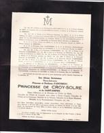 14-18 Médaille De La Reine Elisabeth Princesse De CROY-SOLRE Née Duchesse D'ARENBERG 1874-1956 HEVERLE ROEULX - Avvisi Di Necrologio