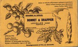 BUVARD  PEPINIERES DE LECELLES BONNET ET DRAPPIER - Farm