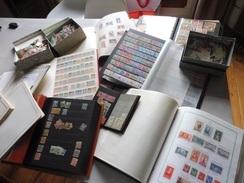 #  Vente Spéciale N°2 - 100% Collection  ! N° 50 / 50  Collection De Timbres FRANCE - 374 Photos !!!! - Timbres