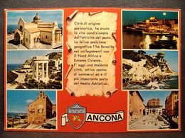(FG.J38) ANCONA - VEDUTE VEDUTINE (VIAGGIATA 1978) Targhetta CAMPIONATO MASCHILE DI PALLAVOLO ANCONA - Ancona