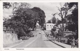 Arusha - Tanganyika - Animata - Tanzania