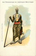 Pays Div-ref K793- Afrique Du Sud - South Africa - Le Transvaal Et L Afrique Sauvage - Carte Bon Etat - - South Africa