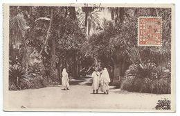 ALGER: Au Jardin D'Essai. CPA Animée N°416. Imprimé RECP 15042A. Algérie - Alger