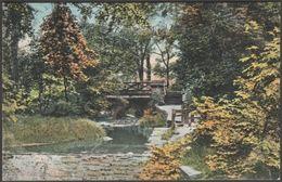 In Whiteley Woods, Sheffield, Yorkshire, C.1905 - Valentine's Postcard - Sheffield
