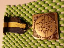 Medaille - Medaille - Medaille - Ulftse Avondvierdaagse 1979 - Netherland