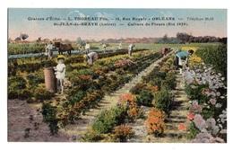 45 LOIRET - SAINT JEAN DE BRAYE Etablissements Thoreau - Sonstige Gemeinden