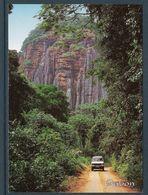 GABON Carte Postale Piste Entre Médouneu Et Sam - Gabon