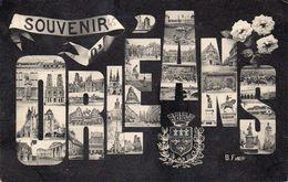 ORLEANS - Souvenir - Multivues - Orleans