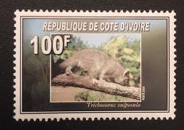 Ivory Coast 2004 - Ivory Coast (1960-...)