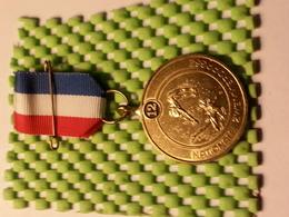 Medaille - Nationale Zwemvierdaagse 12 - Pays-Bas