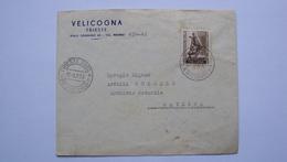 ITALIA TRIESTE AMG-FTT AMG FTT CARTOLINA CON ISOLATO DA 25 LIRE ESPOSIZIONE INTERNAZIONALE AGRICOLTURA - Storia Postale