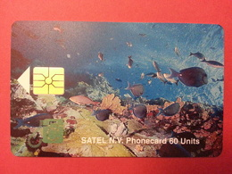 SATEL SABA First Card Mint 60u 2000ex 10/96 MINT No Blister Antilles - Antilles (Netherlands)