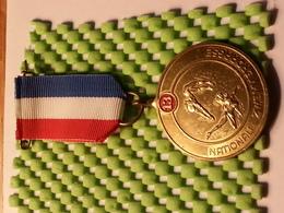 Medaille - Nationale Zwemvierdaagse 13 - Netherland