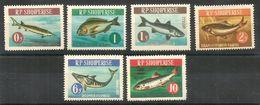ALBANIA Pesci Fish Serie Completa  Nuova ** MNH - Albania
