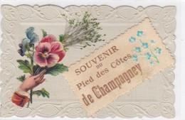 Haute-Saône - Souvenir Du Pied Des Côtes De Champagney - Other Municipalities