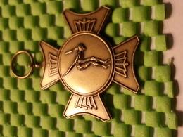 Medaille - Zwemwedstrijd / Swimming Competition / Compétition De Natation / Schwimmwettbewerb - Natation