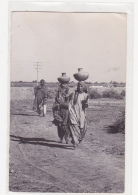 Pakistan Karachi Water Belle - Pakistan
