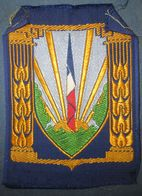 Insigne De Poitrine CJF-Chantiers De Jeunesse Vichy/Petain - 1939-45