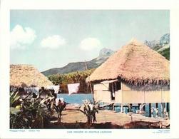 Photo Landry, Pédagogie Pratique 1955 - Nouvelle Calédonie: Case Indigène - Géographie