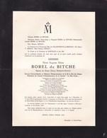 BARVAUX CONDROZ Henri BOREL De BITCHE époux FEARON-AINLEY Diplomate Belge Président LE BON GRAIN (Morlanwelz ?) 1953 - Avvisi Di Necrologio