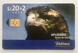 Eagle - Peru