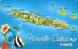 *NUOVA CALEDONIA.* - Scheda A Chip Usata - New Caledonia