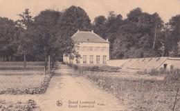 Grand Lovenjoul - Groot Lovenjoul - Fides - Bierbeek