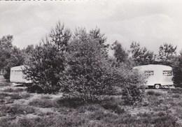 Zonhoven - Camping Beukenhof - Zonhoven