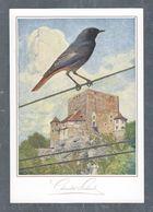 Chromo MILKA SUCHARD VELMA MENU,  Oiseau, Grand Format Env. 20.5 X 14 Cm - Suchard