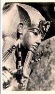 Tut-Ankh-Amen Statue - Egypt