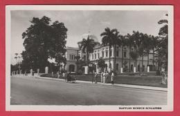 Singapor - Raffles Museum ( To See Back ) - Singapour