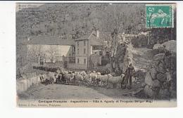 66 - Angoustrine - Villa Agusty - Troupeau Berger Magi - Autres Communes