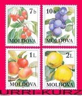 MOLDOVA 1998 Nature Flora Fruits Cherry Plum Apple Quince 4v Sc278-281 Mi278-281 MNH - Fruit