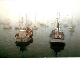 FRANCE. Carte Postale écrite. Brume Sur Le Port. - Pêche